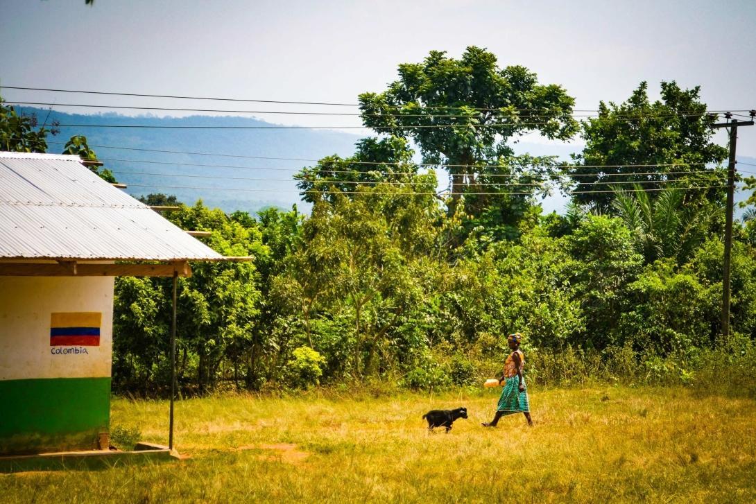 The green and pleasant Akokoa Village